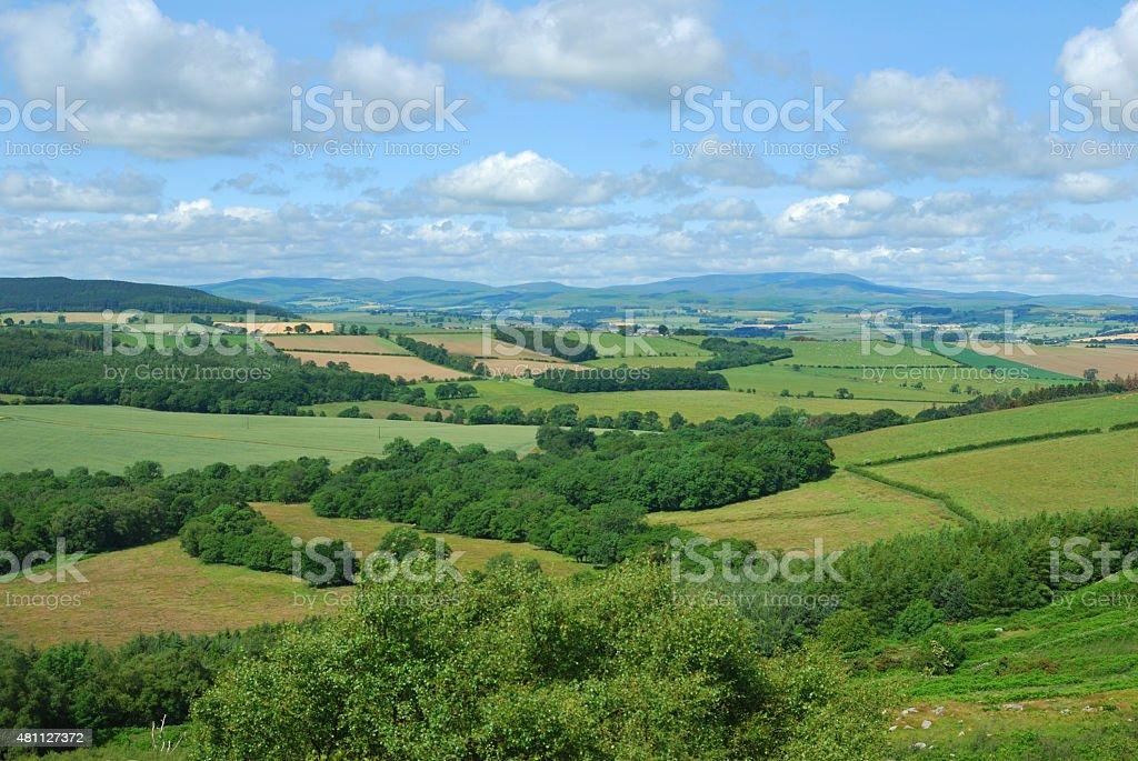 Alnwick moor Edlingham,Northumberland stock photo