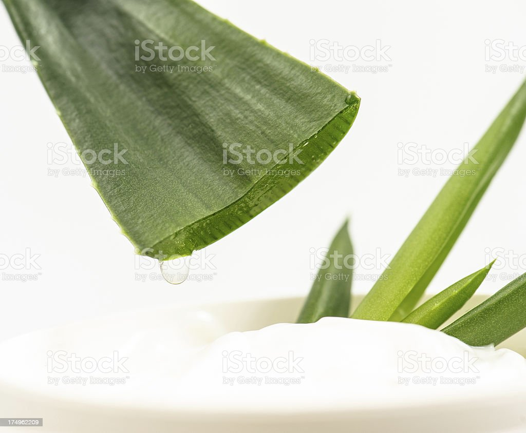 Aloe gel royalty-free stock photo