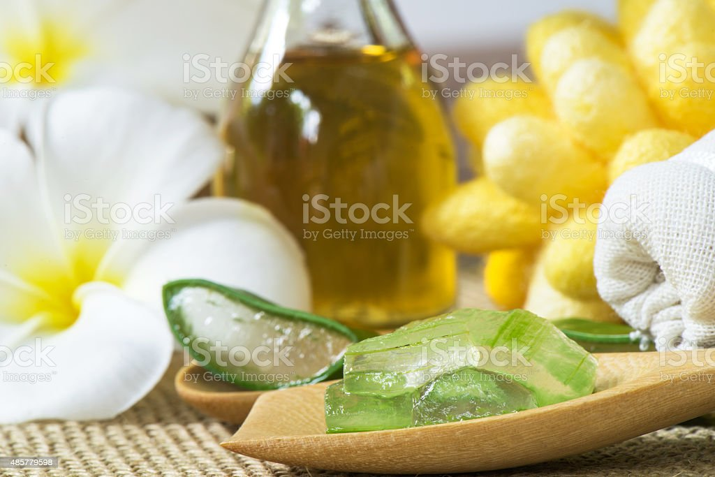 Aloe Vera  for skin treatment and use in spa stock photo