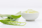 aloe vera fresh leaf  water can help neutralize