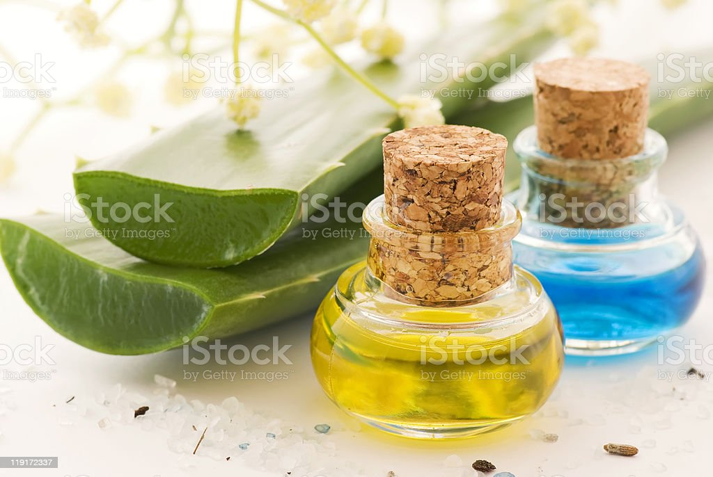 Aloe with Massage Oil stock photo