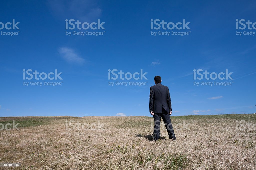 Alone at the field royalty-free stock photo