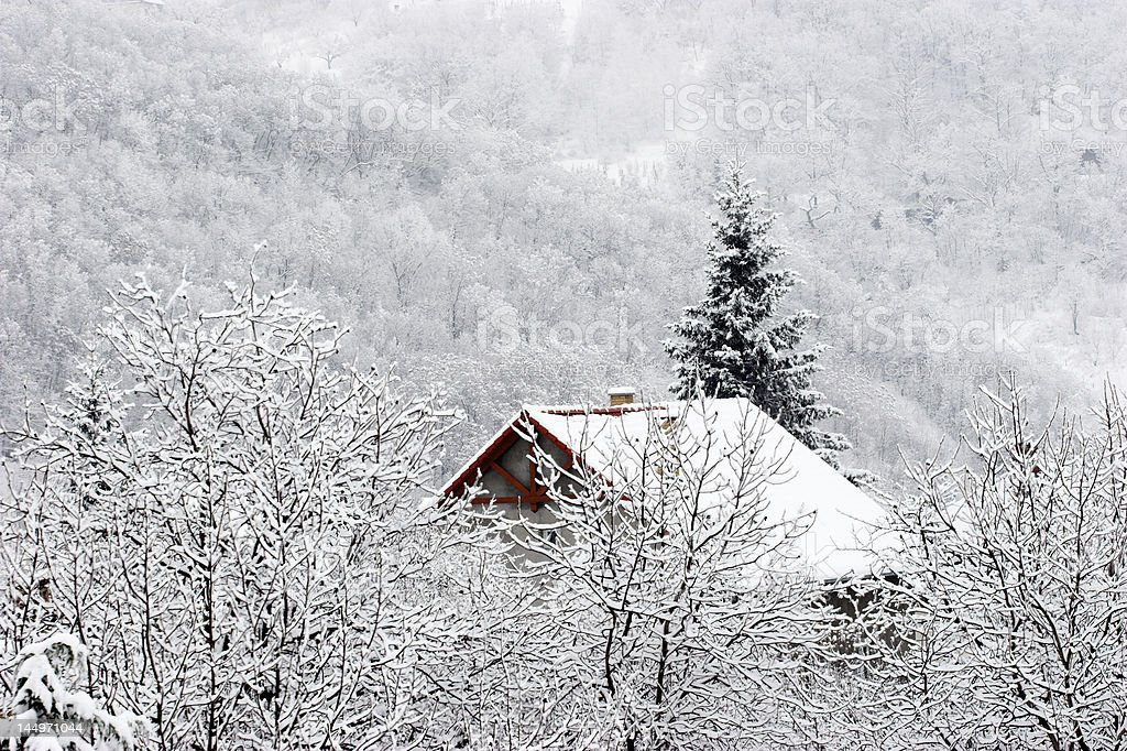 Alone in snow royalty-free stock photo