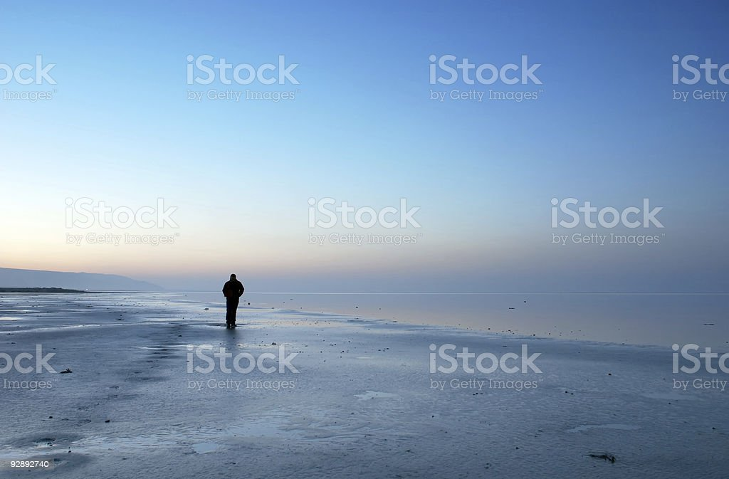 alone in the blue landscape royalty-free stock photo