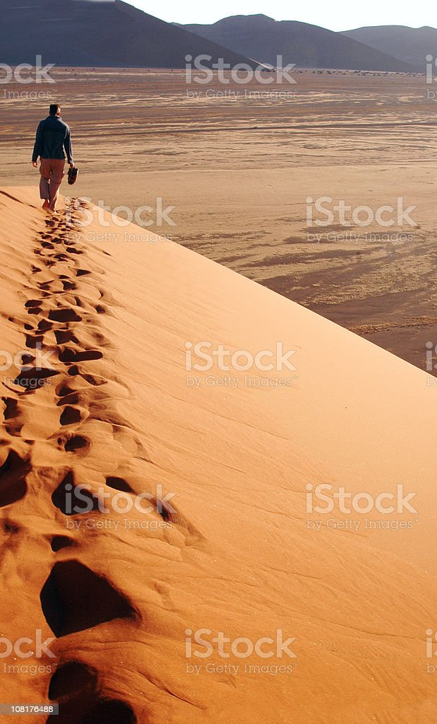 Alone in the dunes stock photo