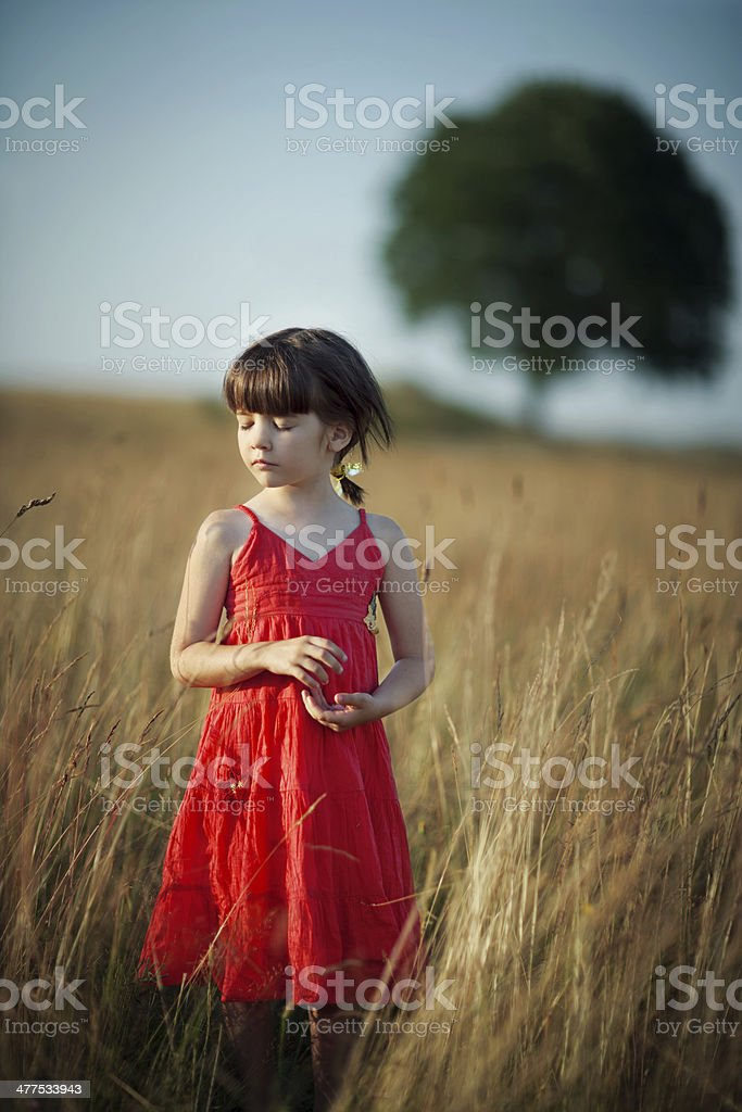Alone in the grass royalty-free stock photo