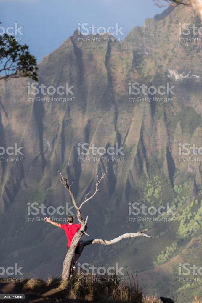 Alone in the Hawaii Mountains stock photo