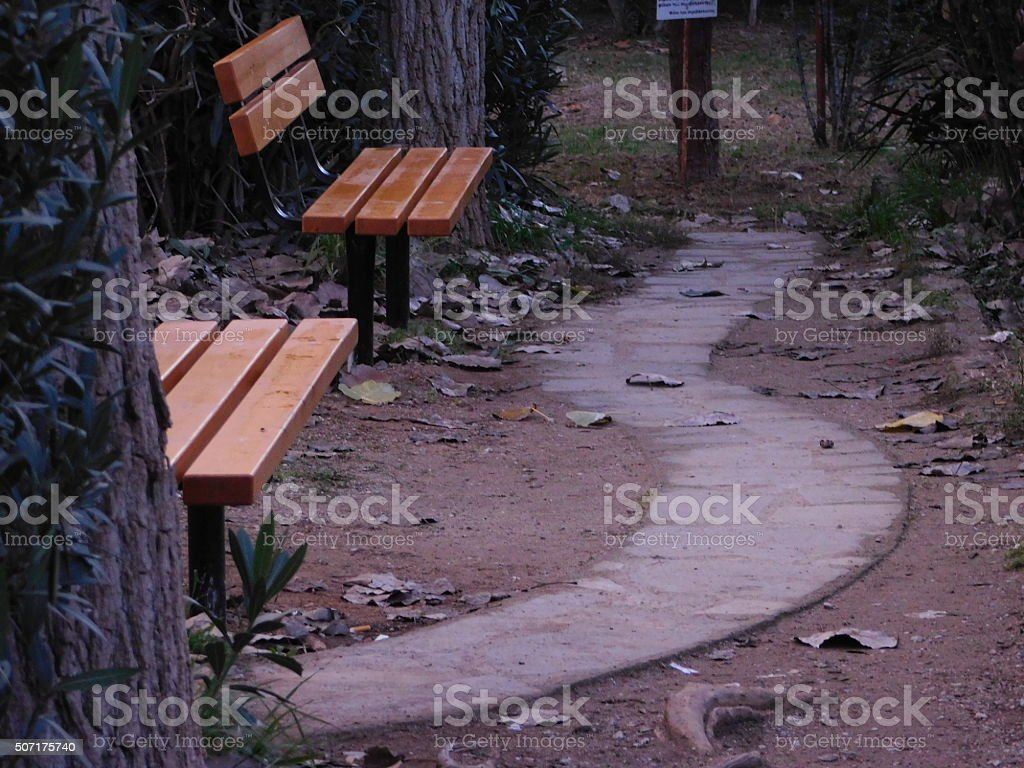 Alone In The Park Walking Path royalty-free stock photo