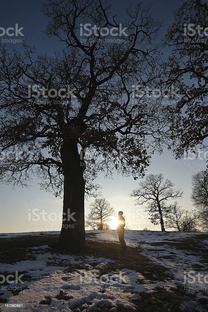 Alone man under big tree royalty-free stock photo