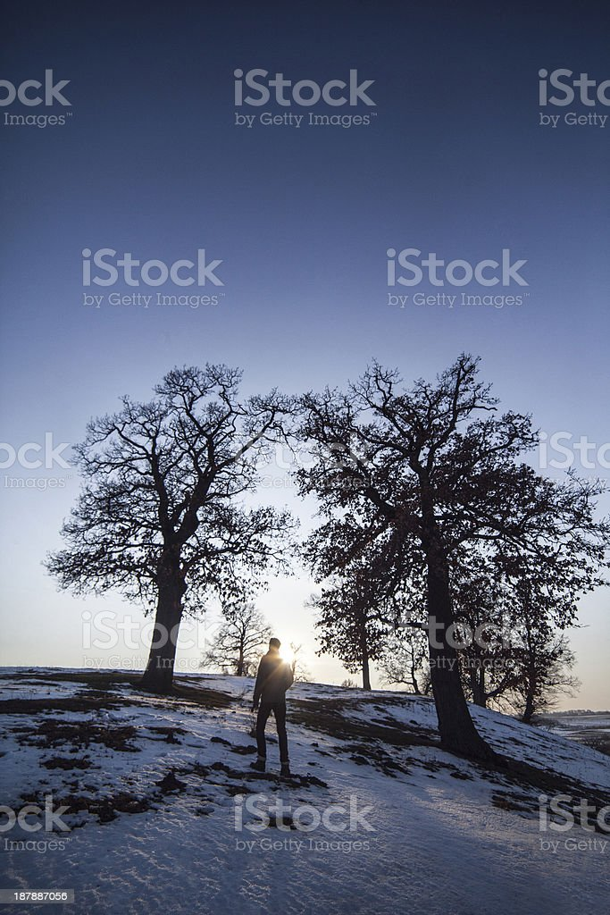 Alone man under big trees royalty-free stock photo