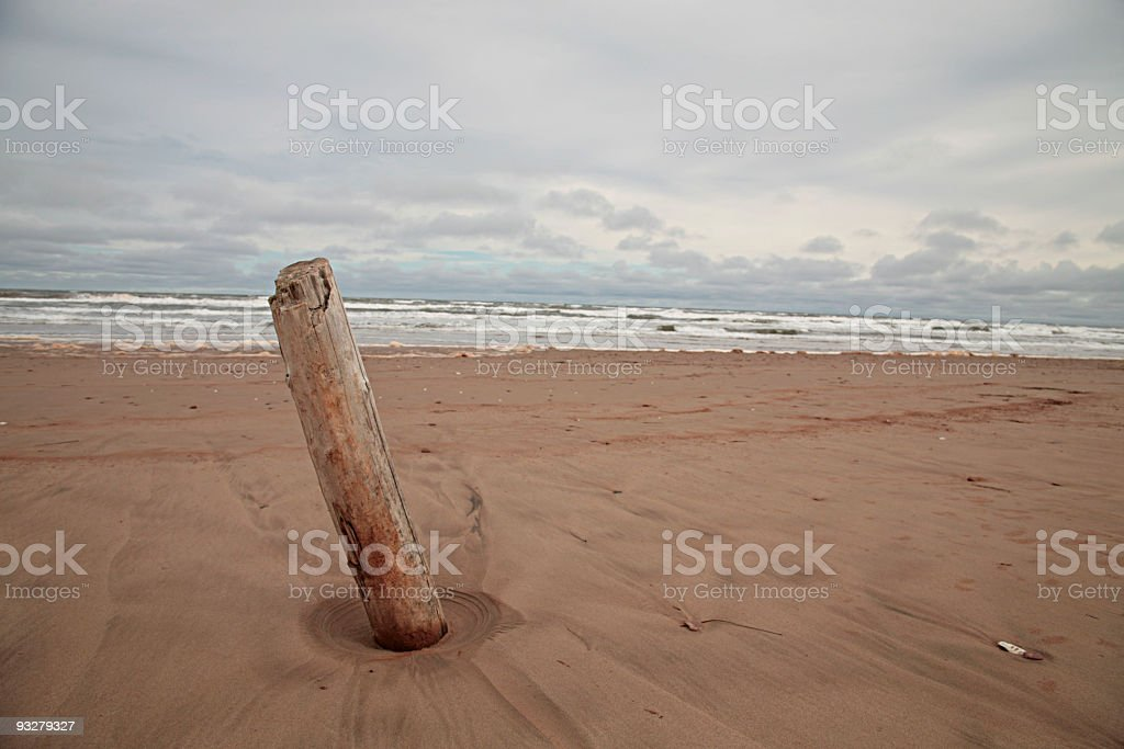 Alone on the beach royalty-free stock photo