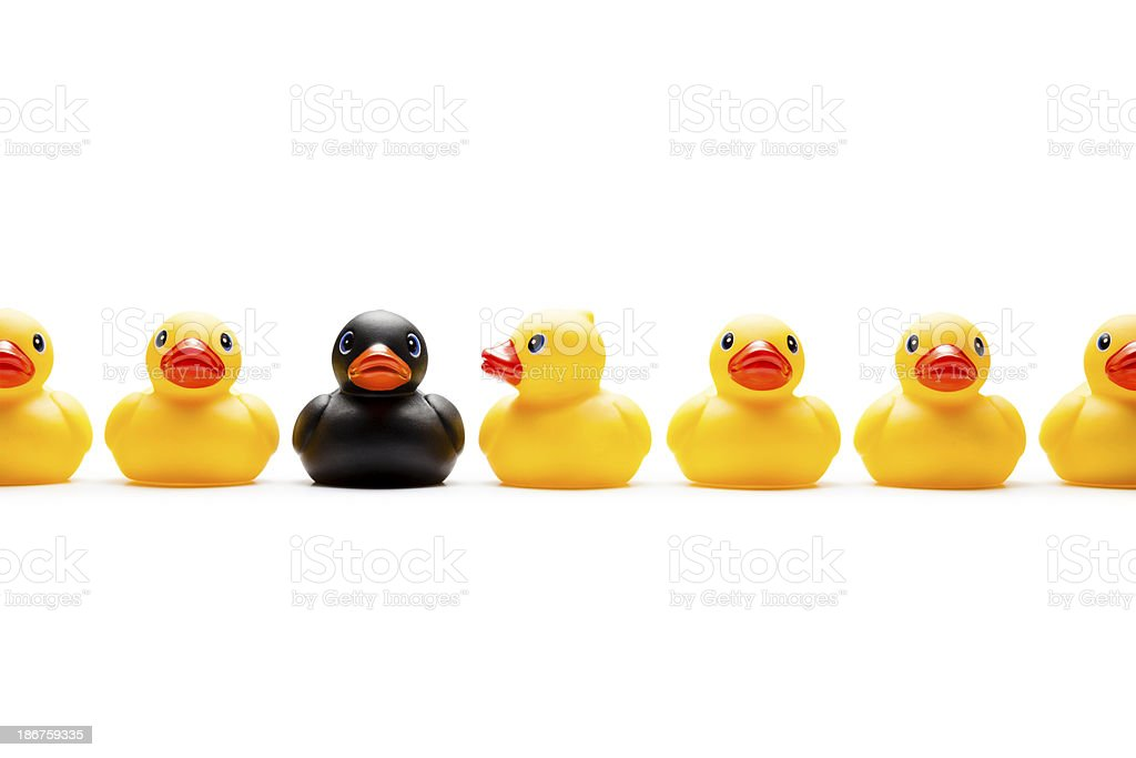 Alone - Racism Rubber Duck Humor Individuality royalty-free stock photo