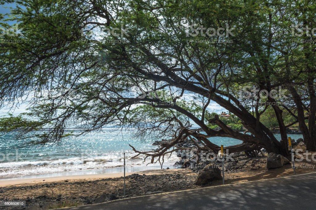 Along Maui coast, Hawaii stock photo