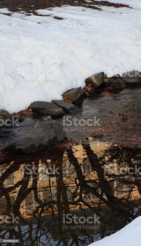 along river in winter with ducks4 stock photo