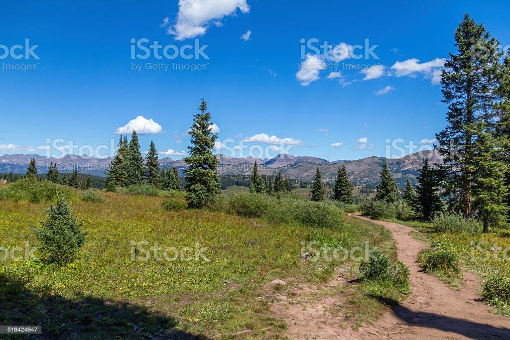 Along the Shrine Mountain Hiking Trail, Colorado stock photo