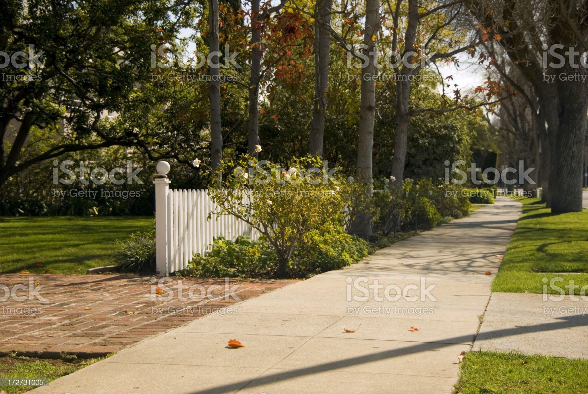 Along the soft sidwalk royalty-free stock photo