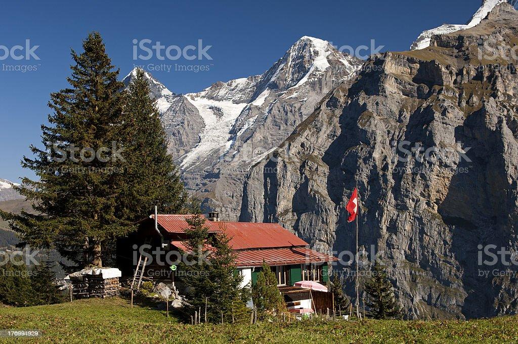 Alp in the Bernese Oberland, Switzerland royalty-free stock photo