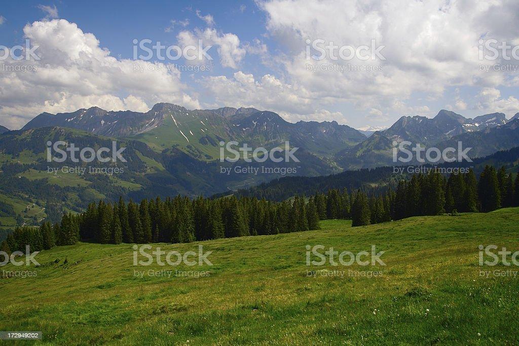 Alp Meadow royalty-free stock photo