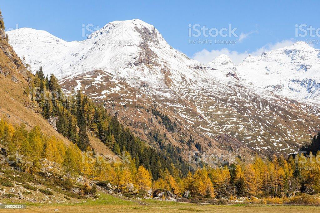 Alp valley stock photo