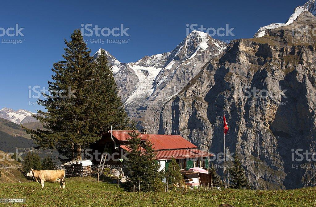 Alp with farm house royalty-free stock photo