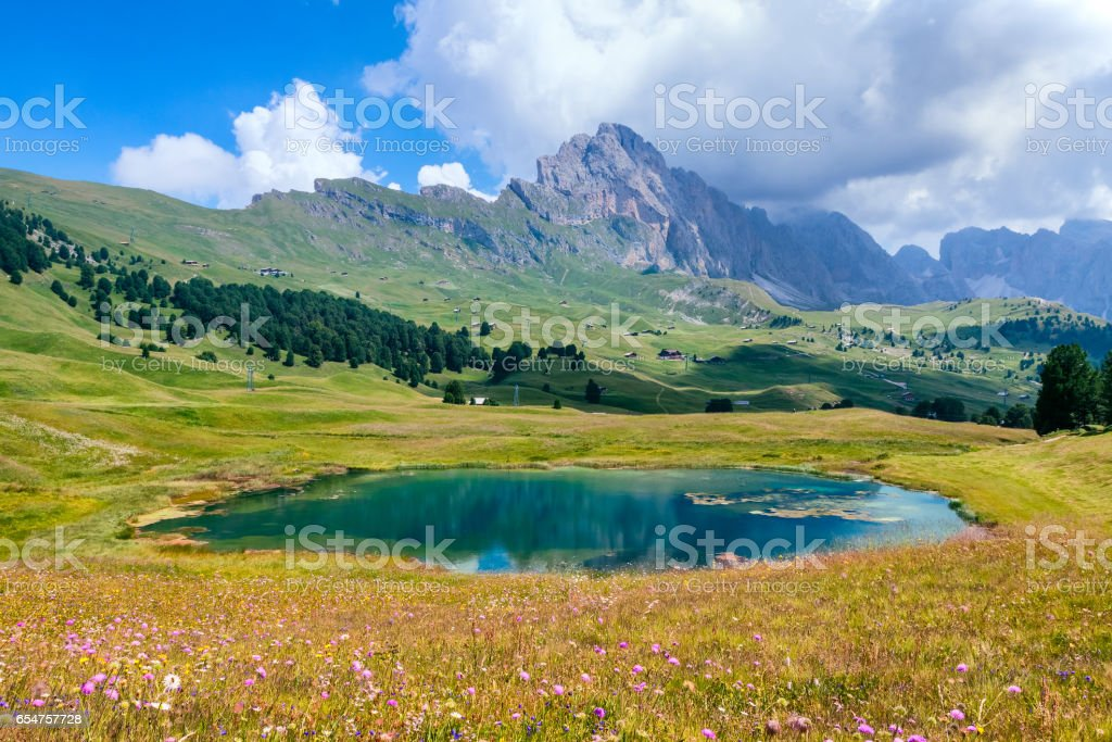 Alpe di Siusi Dolomites, Val Gardena, South Tyrol, Italy stock photo
