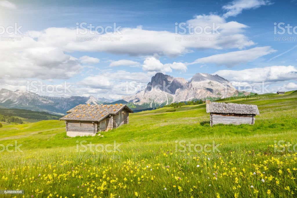 Alpe di Siusi, South Tyrol, Italy stock photo