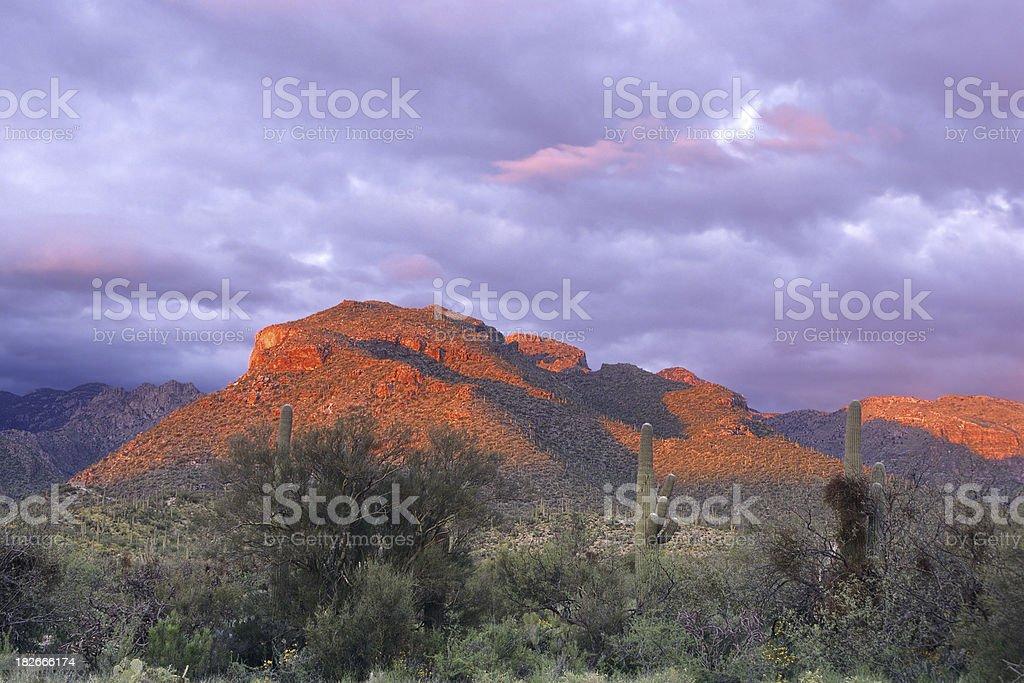 Alpenglow at Sabino Canyon stock photo