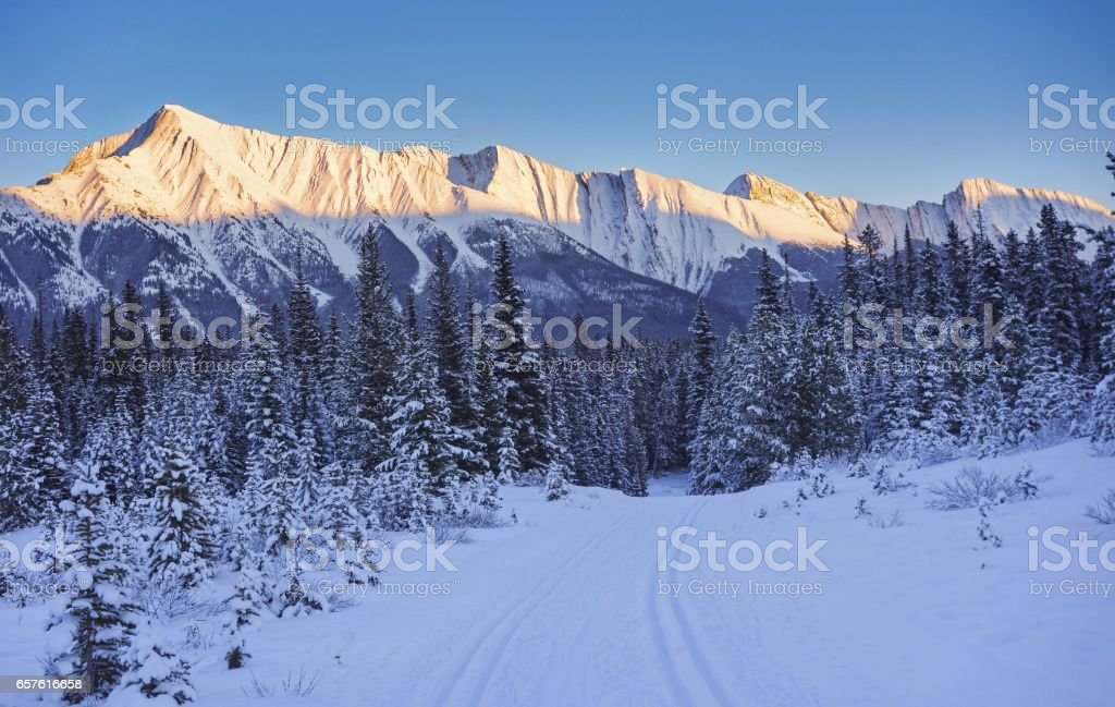 Alpenglow on Mount Shark cross country skiing trail in Kananaskis Country stock photo
