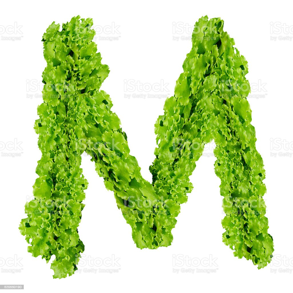 Alphabet M made from green leaves on isolated stock photo