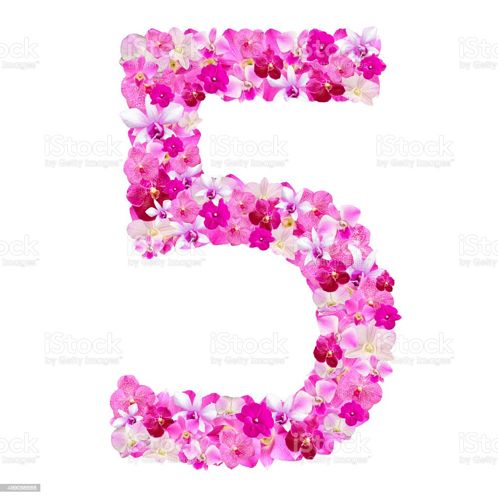 Alphabet number five from orchid flowers isolated on white stock photo