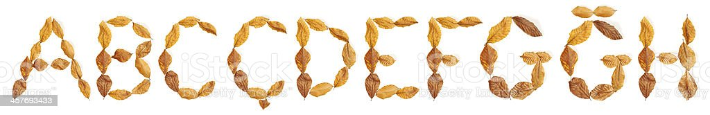 """Alphabet with leaves: """"A"""" to """"H"""" royalty-free stock photo"""