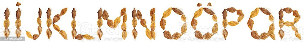 """Alphabet with leaves: """"I"""" to """"R"""" royalty-free stock photo"""
