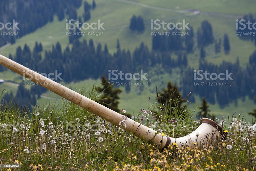 Alphorn In The Meadow stock photo