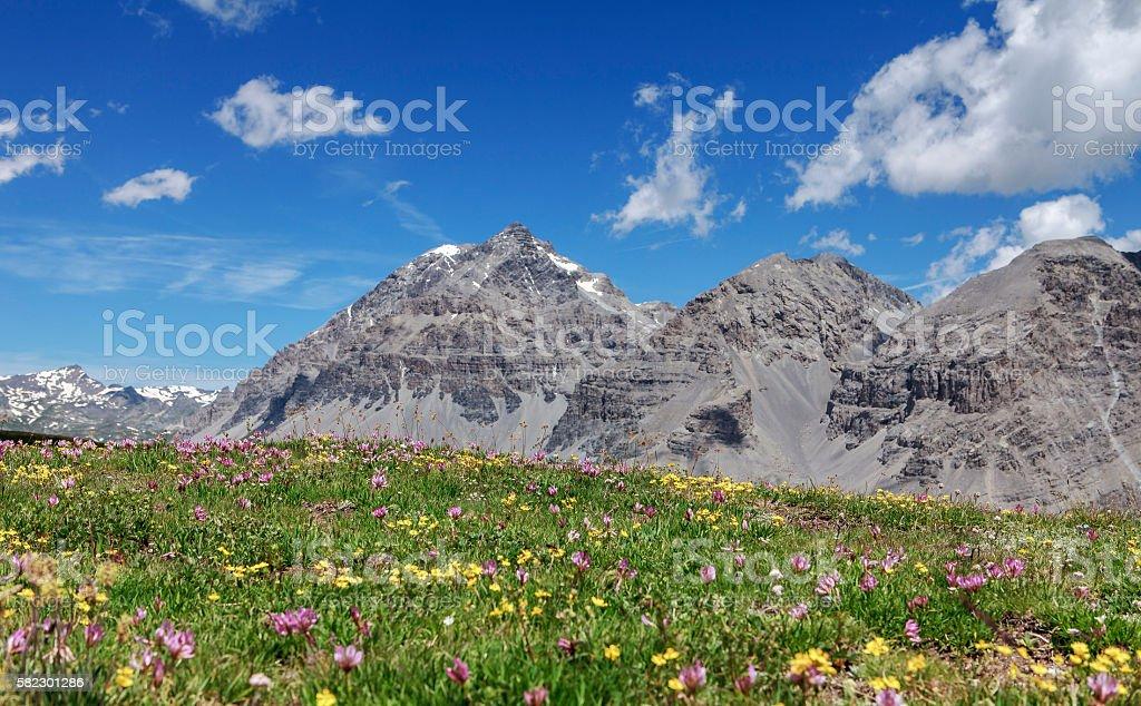 alpin mountains stock photo