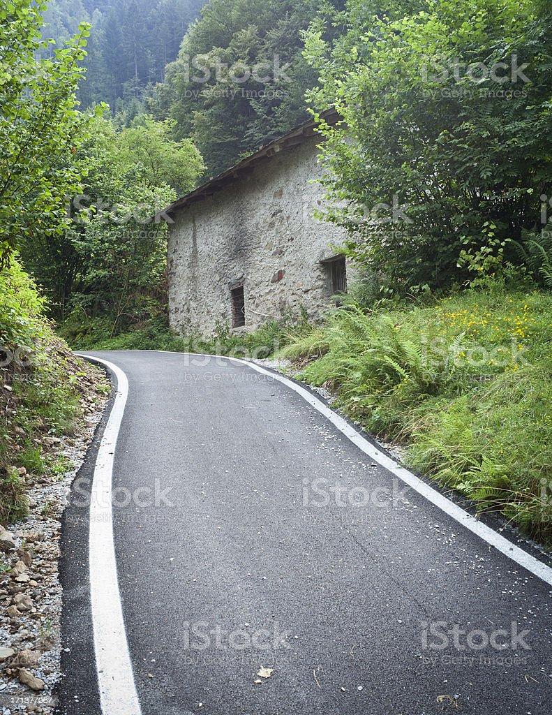 Alpine Asphalt Road, Vertical royalty-free stock photo