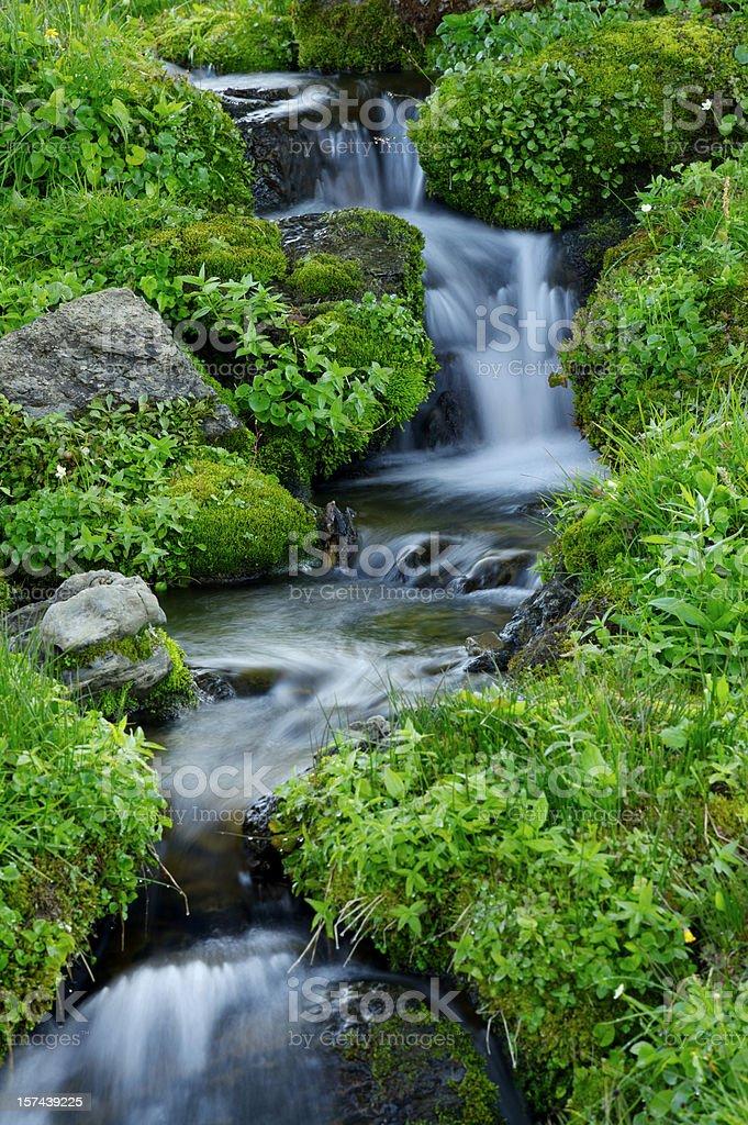 Alpine Cascade stock photo