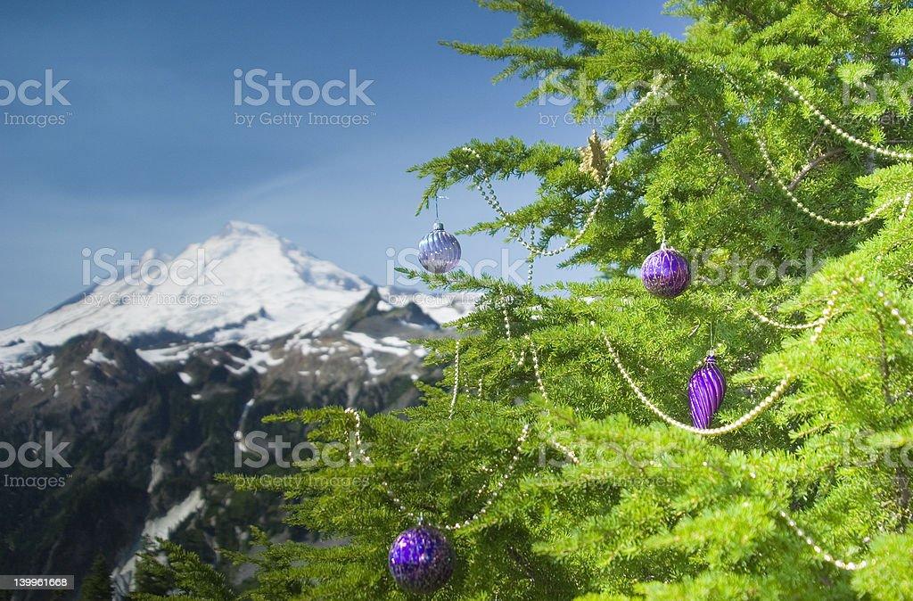 Alpine Christmas2 royalty-free stock photo