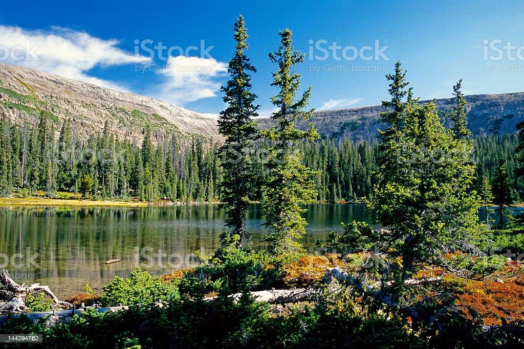 Alpine Dreams stock photo