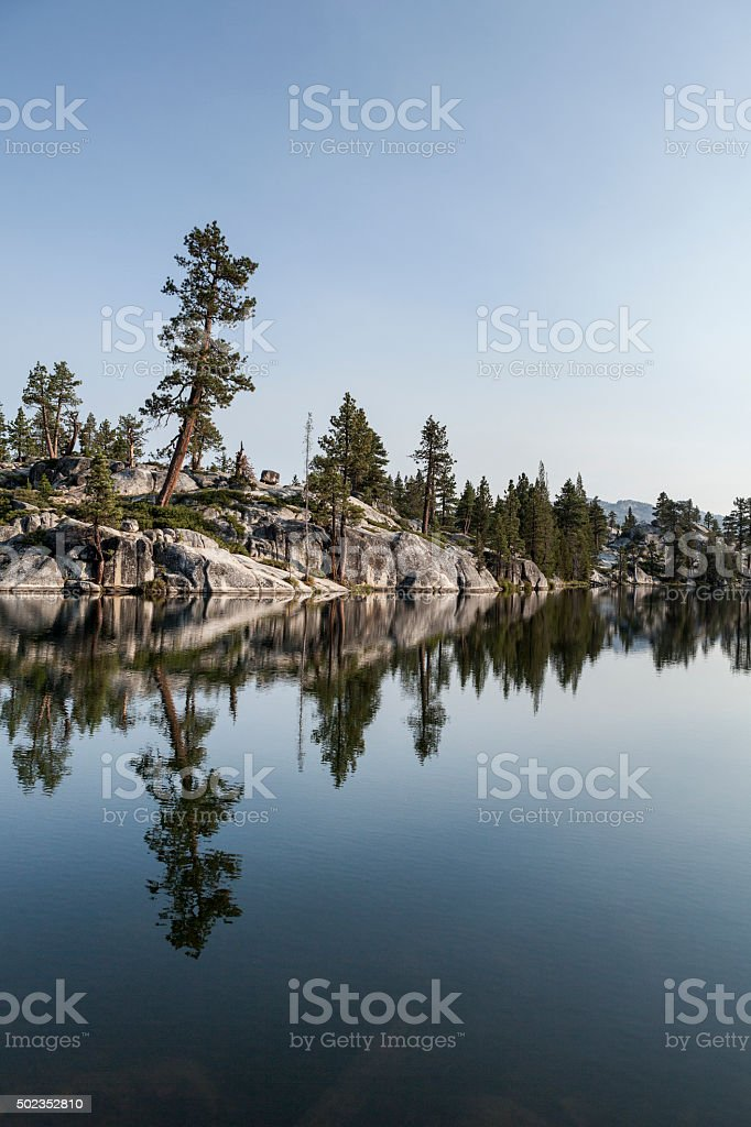 Alpine Forest Reflected in Calm Water stock photo