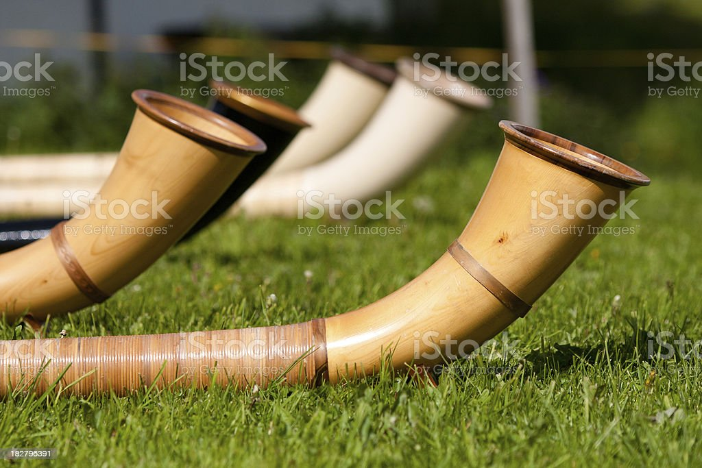Alpine Horns In The Grass stock photo