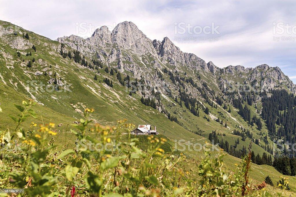 alpine hut in austria, tyrol - Lechaschauer Alm royalty-free stock photo