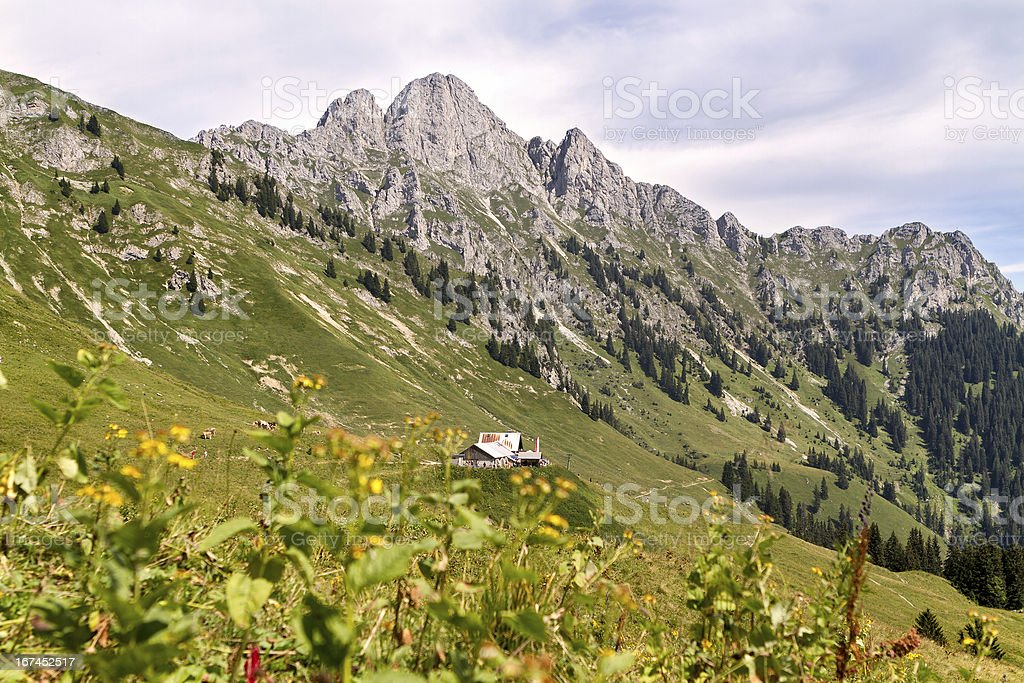 alpine hut in austria, tyrol - Lechaschauer Alm stock photo