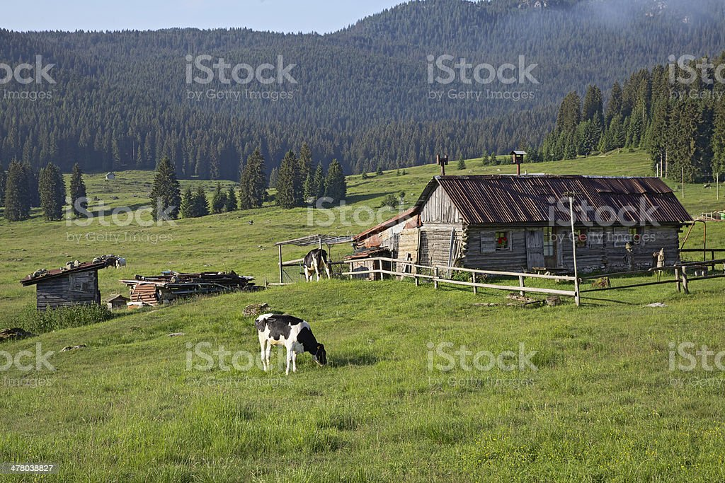Alpine hut in the spring at sunrise royalty-free stock photo