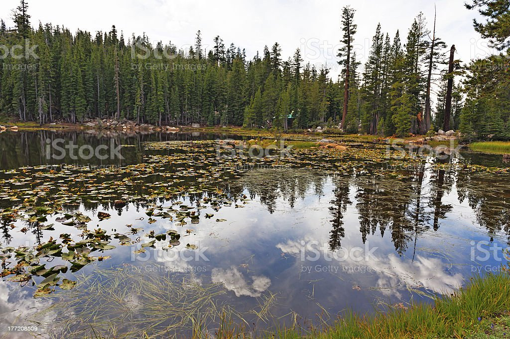 Alpine Lake with reflections stock photo