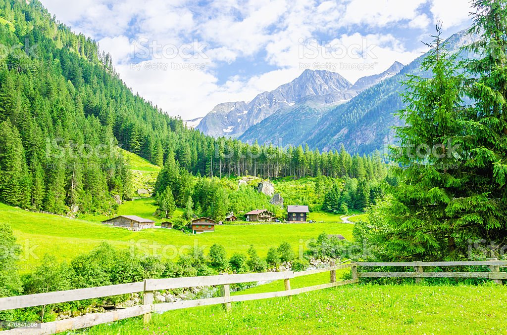 Alpine landscape and green meadows Alps, Austria stock photo