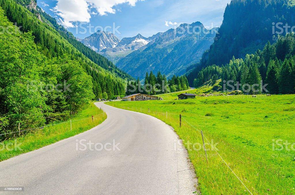 Alpine landscape, road and meadows, Alps, Austria stock photo