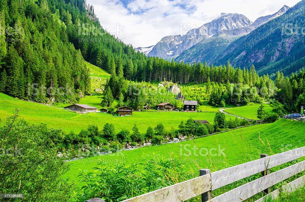Alpine landscape with green meadows, Alps, Austria stock photo