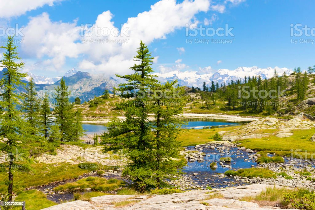 Alpine landscape with lake, mountains and fir trees stock photo