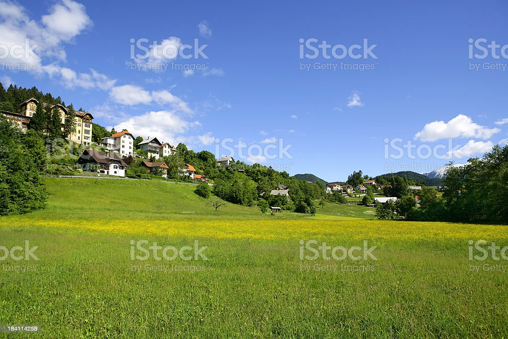 Alpine life royalty-free stock photo