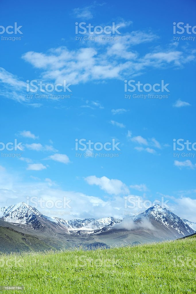 Alpine meadow and mountains royalty-free stock photo